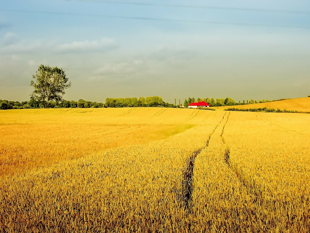 New Regulation On Selling Agricultural Properties in Poland